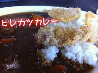 Dog Cafe MATSU