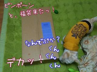 フリーステッチさんの福袋キタ★