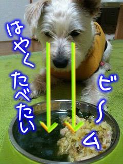 わかめスープとキャベツご飯