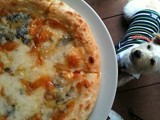 カネ保水産  ゴーダチーズのピザ
