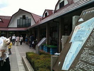 道の駅「朝霧高原」