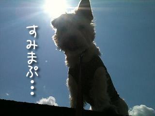 s-IMG_8049.jpg