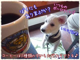 OHANA/コーヒー