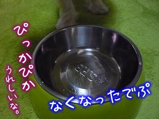 手作り犬ご飯★とろーりささみおじや