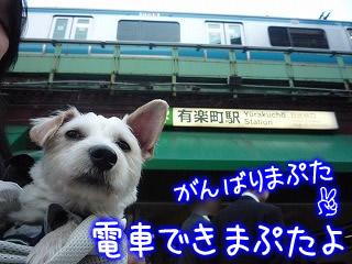 ぷーちゃん有楽町駅