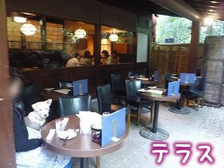 手羽先唐揚 鳥良 吉祥寺4号店