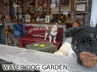 WATER DOG GARDEN