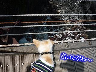 城ヶ崎の門脇吊橋