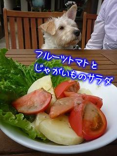 萌木の村 ブルーパブレストラン ロック