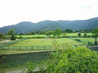 朝霧高原「Field Dogs Garden」