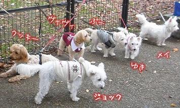 立川昭和記念公園だっ!集合っ!