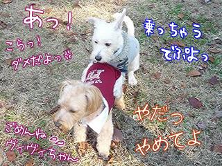 集合っ!立川昭和記念公園だ!パート2