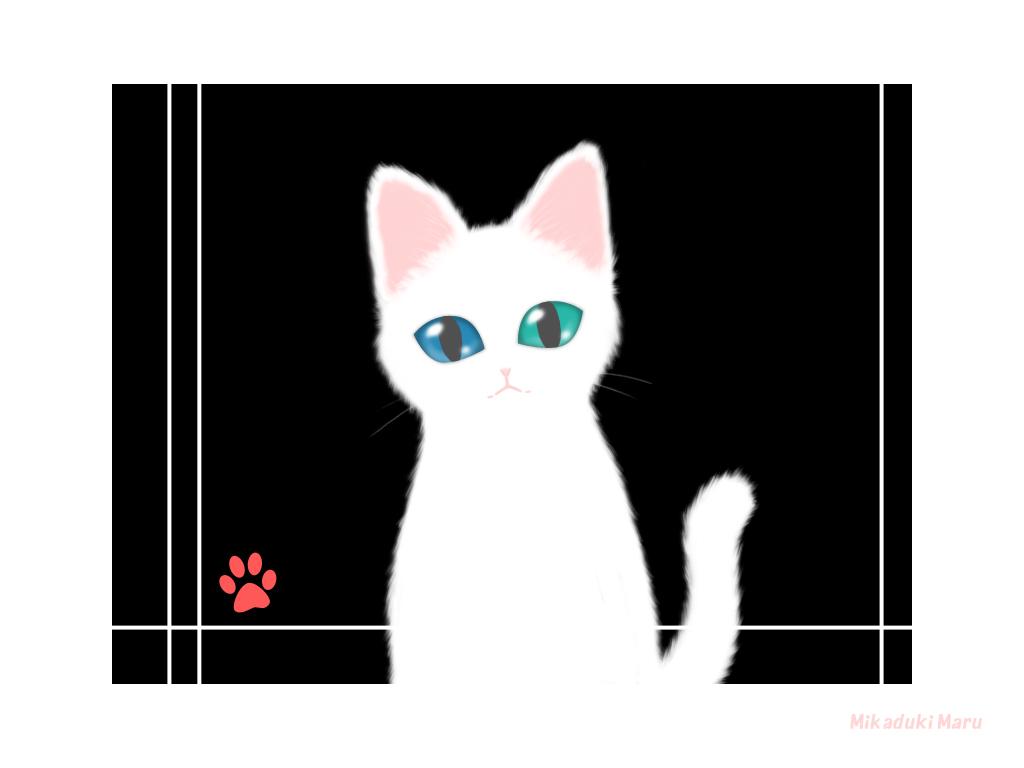 猫 オッドアイ イラスト