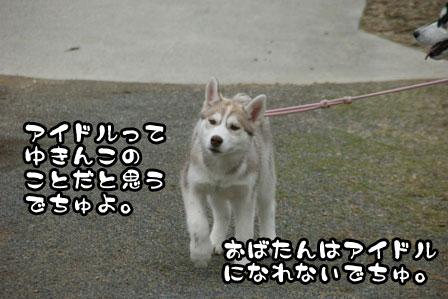 10_20110220225119.jpg