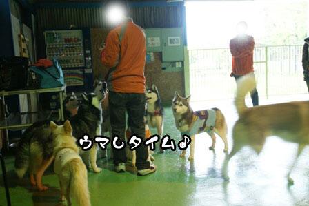 10_20110506204601.jpg