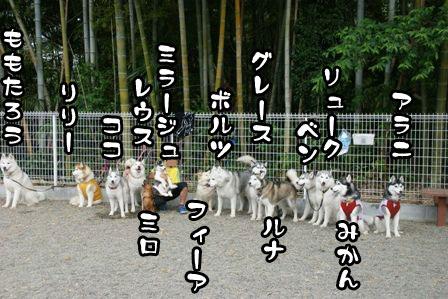 10_20110630205259.jpg