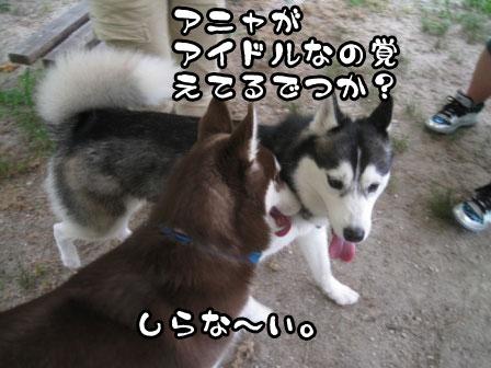 10_20110724222553.jpg