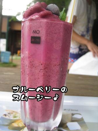 10_20110829214659.jpg