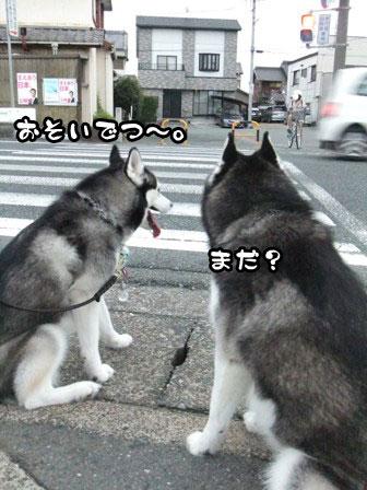 10_20110920210953.jpg