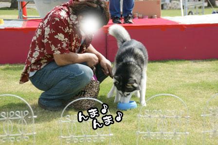 10_20111004210631.jpg