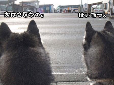 10_20120105193406.jpg