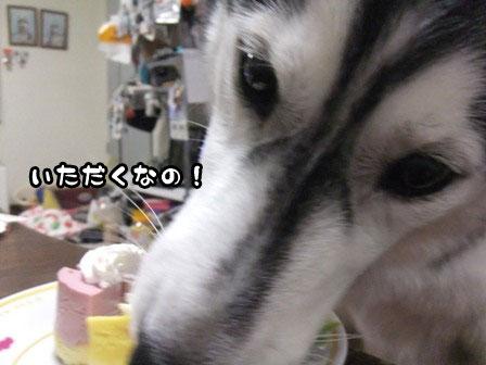 10_20120109214315.jpg