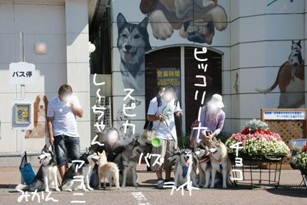 11_20100927124936.jpg