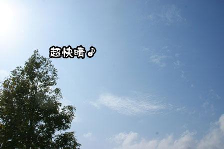 11_20110301203528.jpg