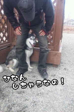 11_20110327200609.jpg