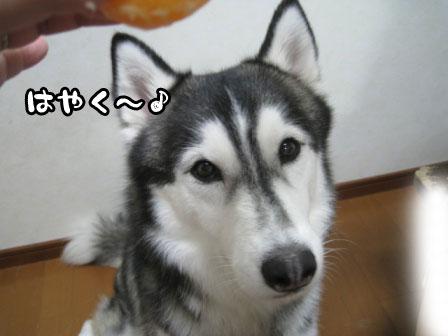 11_20110703224523.jpg