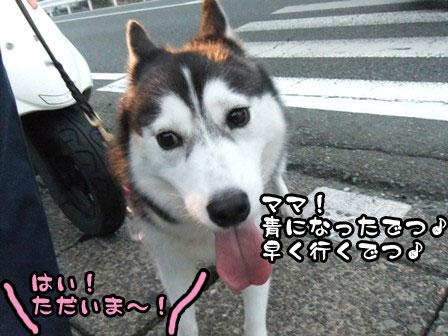 11_20110920210956.jpg