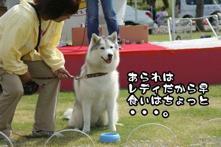 11_20111004210636.jpg