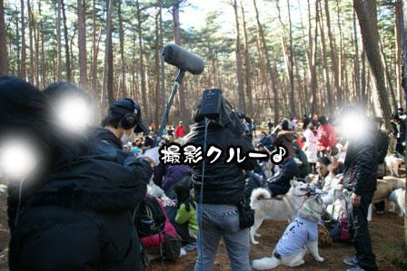 11_20111210192434.jpg