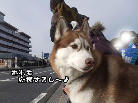 11_20120105193411.jpg