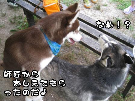 12_20110724222601.jpg