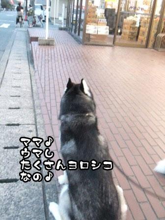 12_20110920211004.jpg