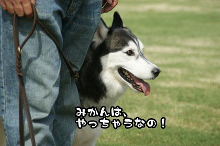 12_20111004210640.jpg