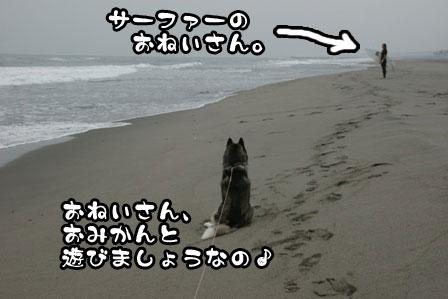 12_20111030220243.jpg