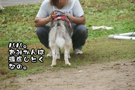 12_20111108003034.jpg
