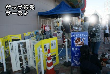 12_20111118213810.jpg