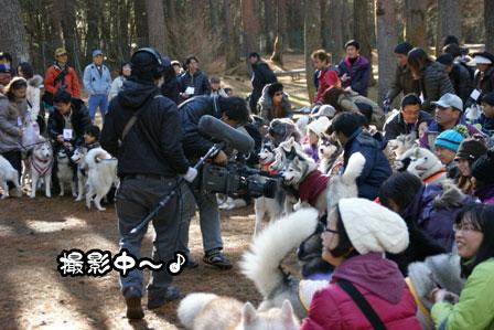 12_20111210192439.jpg