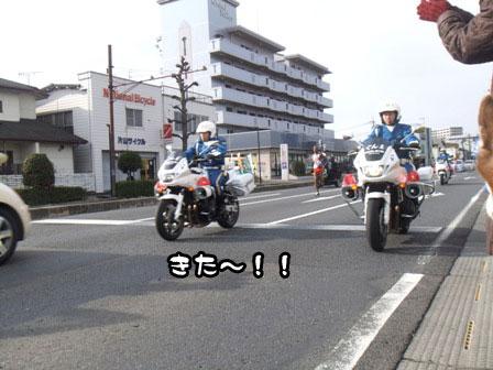 12_20120105193419.jpg