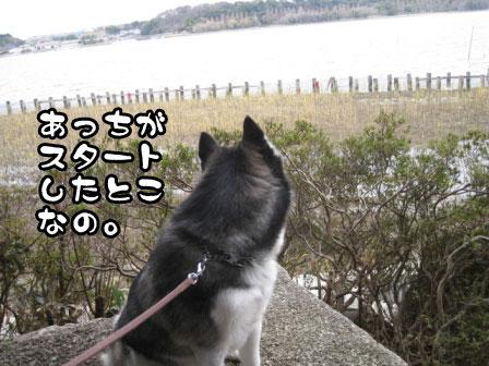 13_20110306200650.jpg