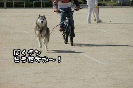 13_20111002200200.jpg