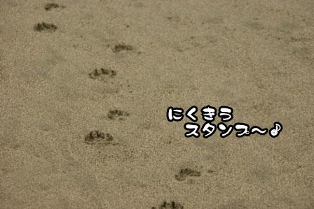 13_20111030220250.jpg