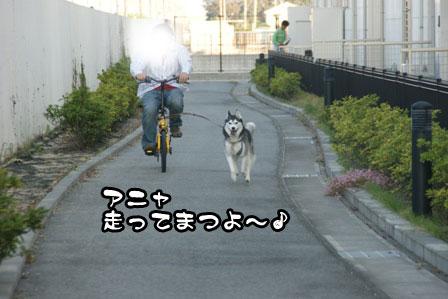 13_20111118213814.jpg