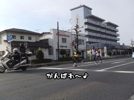 13_20120105193433.jpg