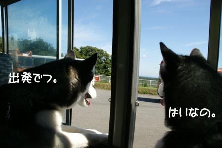 14_20100927124952.jpg