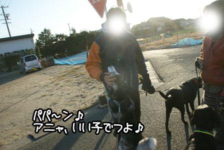 14_20110123161223.jpg