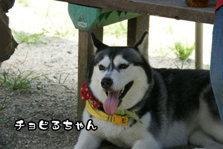14_20110809201032.jpg